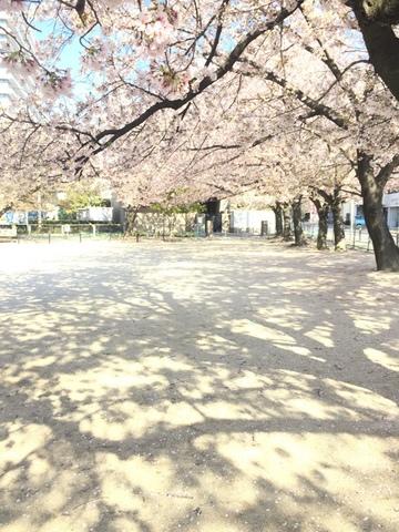 blogIMG_5135.JPG